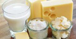 Productos Lacteos y derivados