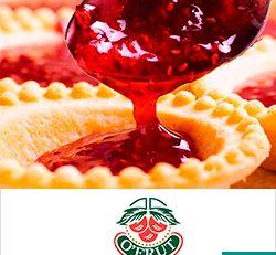 O'Frut SA de CV