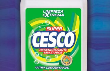 INTERNATIONAL CLEAN SA DE CV