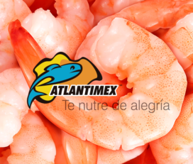 Grupo Atlantimex