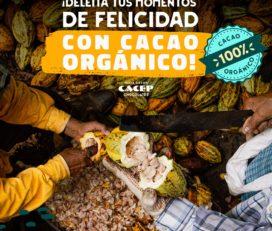 CACEP CHOCOLATES