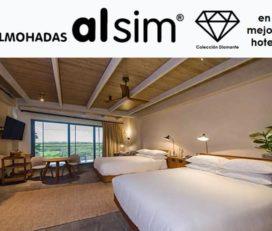 Almohadas Alsim