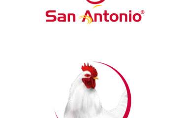 Grupo Pecuario San Antonio